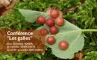 conferencelesgalles_conf_galles.jpg