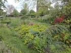 jardinintergenerationneldelisabethetmichel_img_20210527_133917.jpg