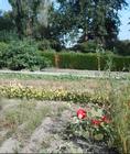 jardintemoindewez_wez-jardinpartage-2020.png