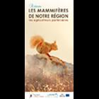 lesmammiferesdenotreregion_les-mammiferes-de-notre-region.png