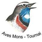 rencontresornithologiquesduhainautoccidenta_logo_aves.jpg