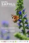 sauvonsnospollinisateurs_mhn-expo-pollinisateurs-affiche-001.jpg